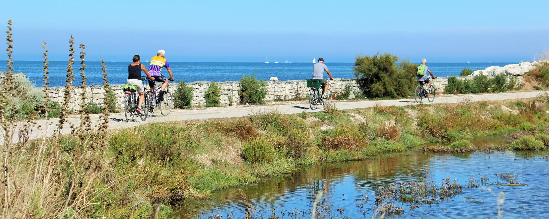 The bike paths on Île de Ré by Lesley Williamson