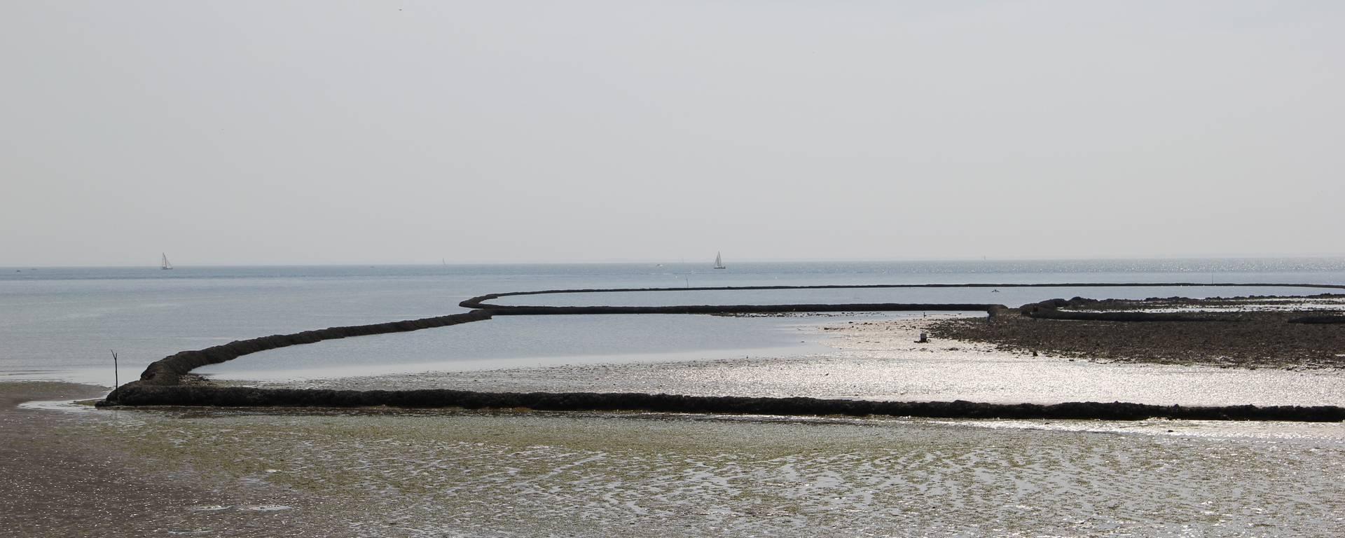 The fish locks of Sainte-Marie de Ré