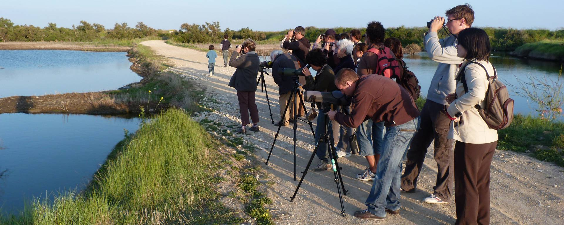 Group observing birds © SPL Destination Ile de Ré