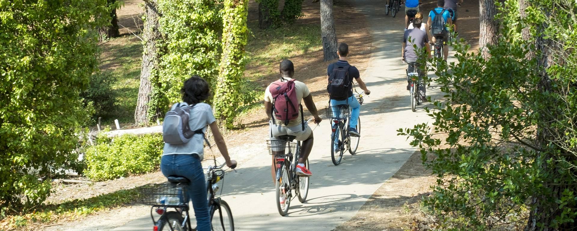 Ile de Ré by bike by Yann Werderoy