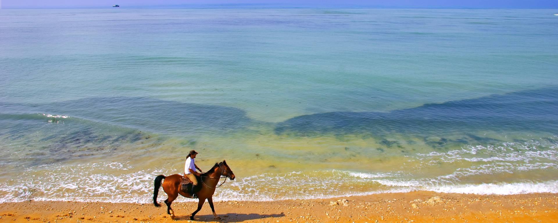 Horseback ride on the beach by François Blanchard