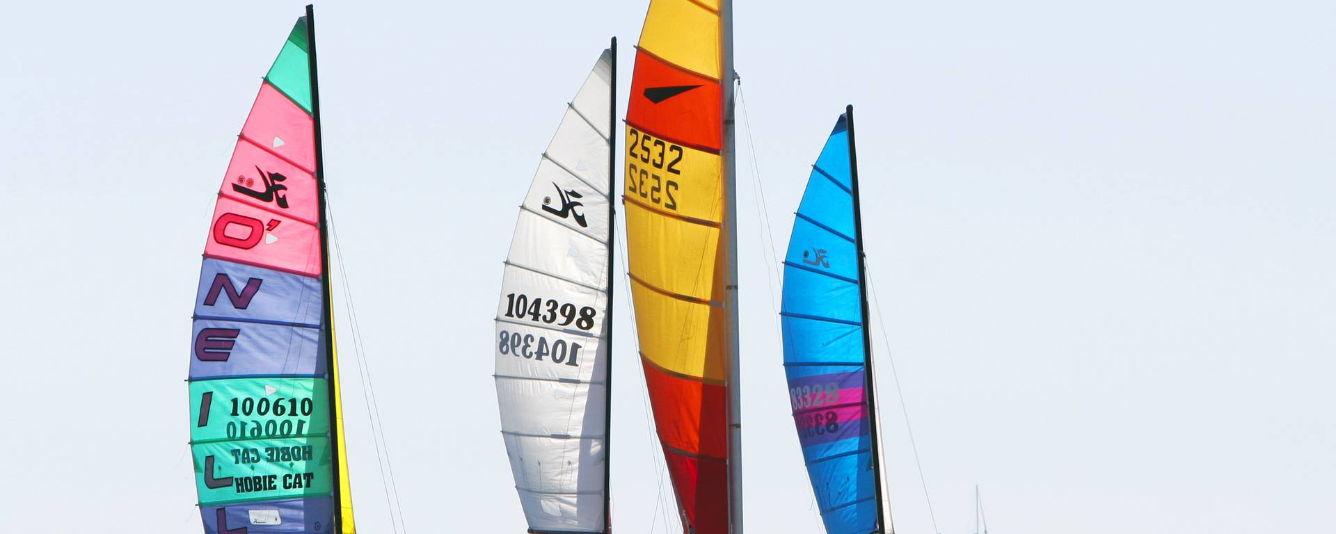 Ile de Ré sailing boats by François Blanchard