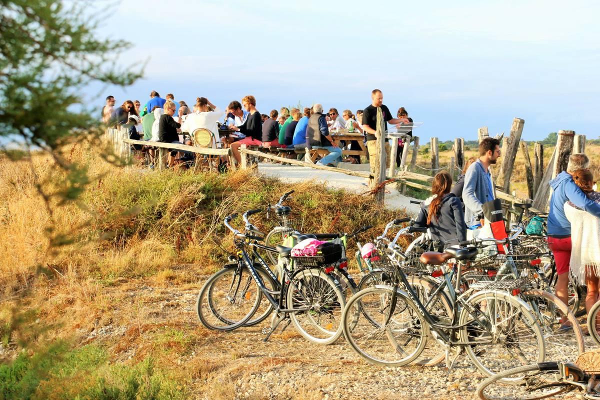 Bike hire and cycling paths | Destination Ile de Ré