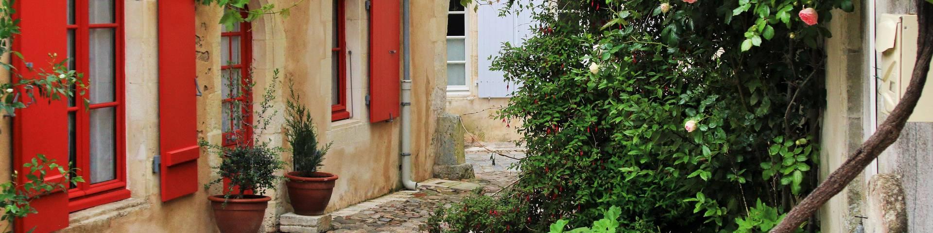 Guesthouses in Saint-Martin-de-Ré by Lesley Williamson