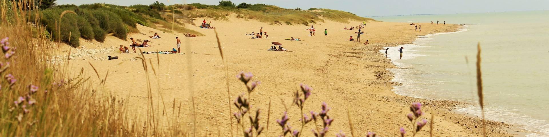 The beaches in Sainte-Marie-de-Ré by Lesley Williamson