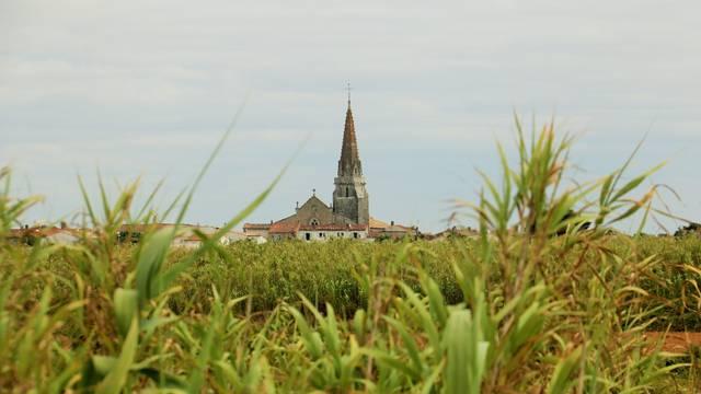 Saint-Marie-de-Ré Church by Lesley Williamson