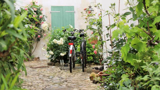 Bike rentals in Loix