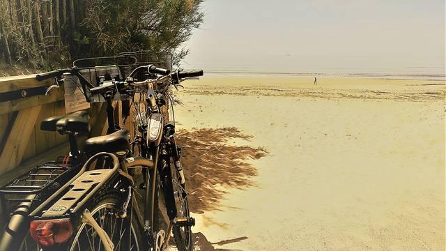 Bike rentals in Le Bois-Plage-en-Ré