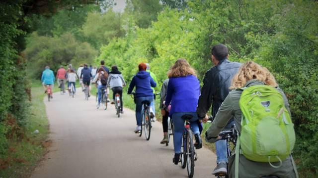 bikes Ile de Ré