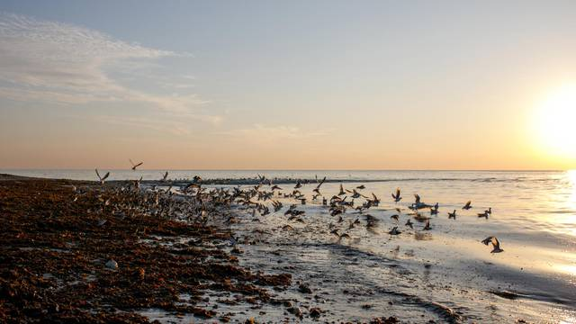 Things to do in winter on the Ile de Ré