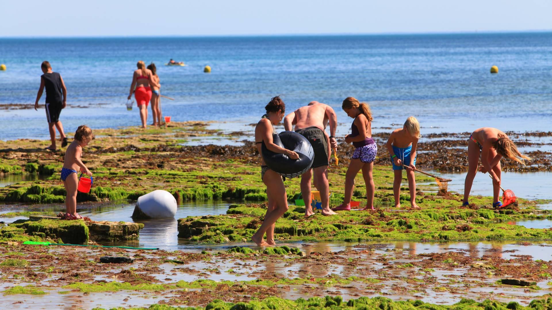 Fishing with children Ile de Ré by François Blanchard