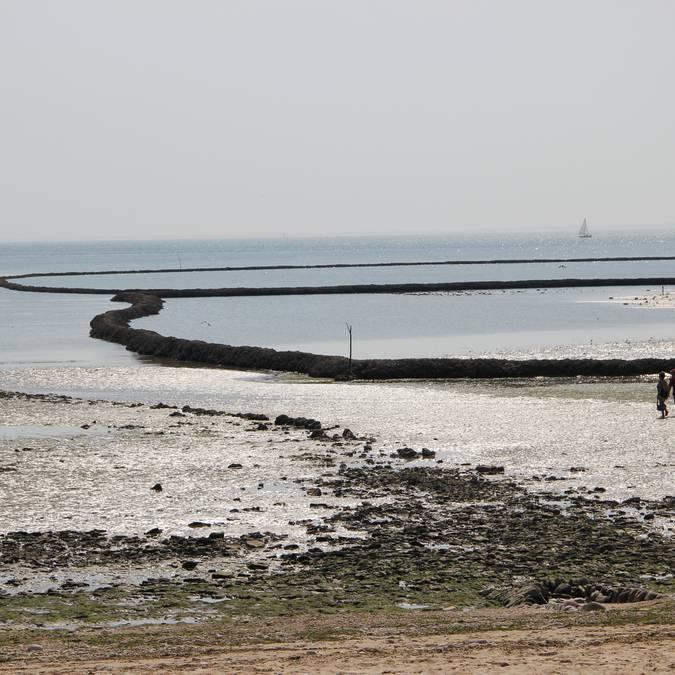 Fishing lock ©SPL Destination Ile de Ré